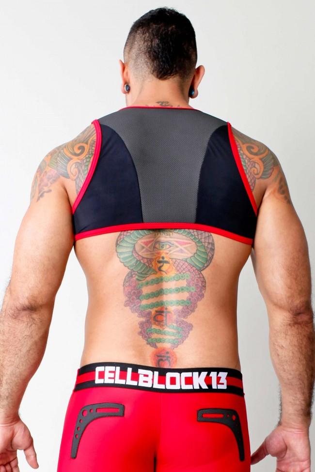 Cellblock 13 Stryker Harness Black  Red